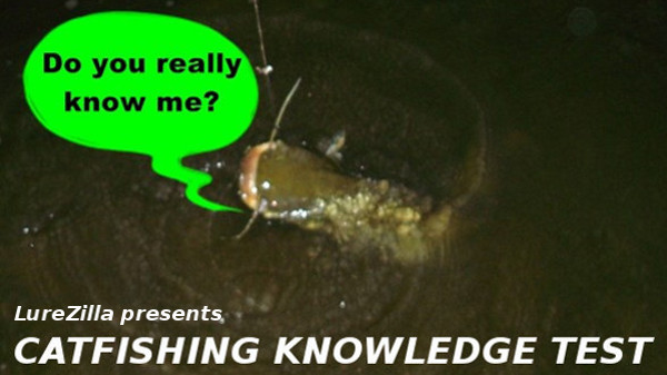 fishing knowledge tester